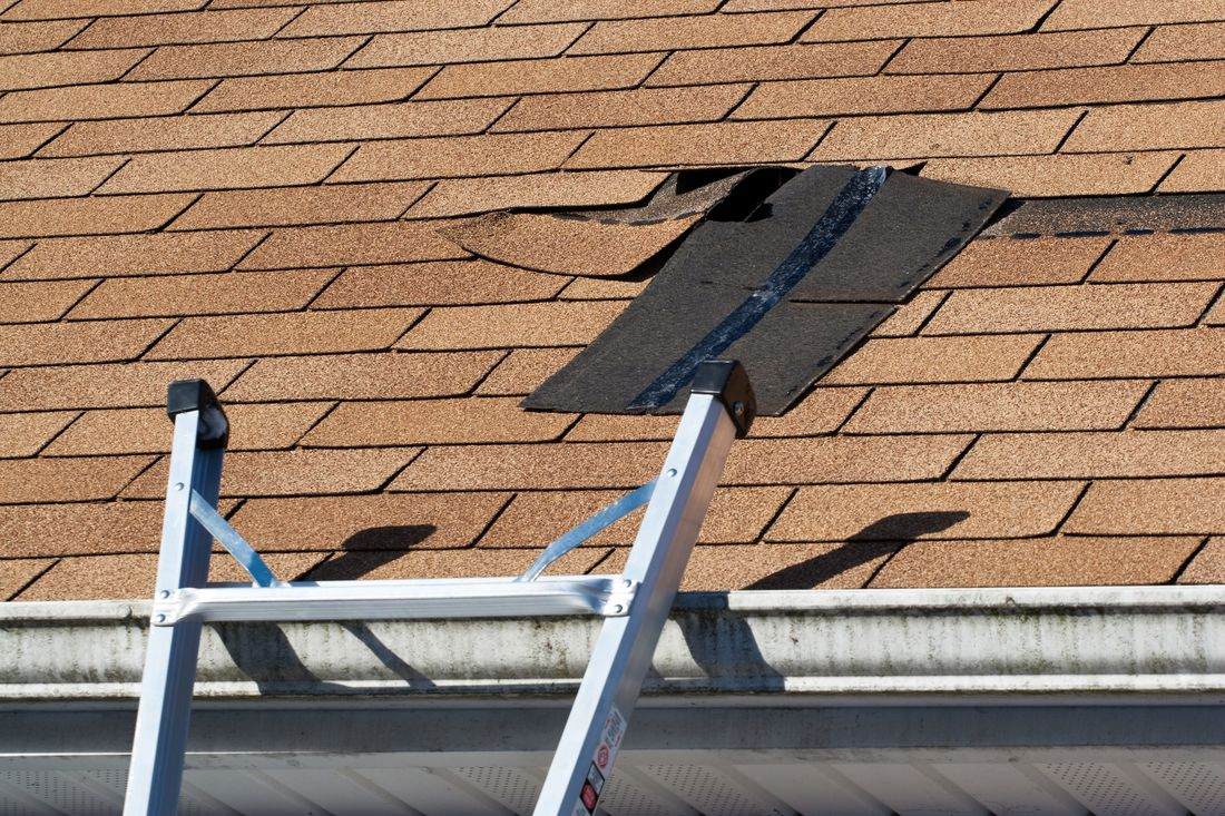 Asphalt shingles are being removed from a damaged roof and will be replaced by Spring Hill Roofers.